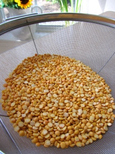 dry yellow split-peas